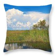 Shark River Slough Throw Pillow