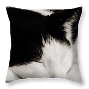 Sharp And Sweet Throw Pillow
