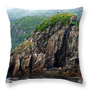 Sharp Jagged Rocks  Throw Pillow