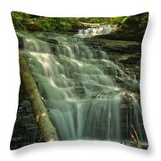 Shawnee Falls Throw Pillow