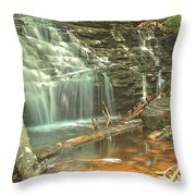 Shawnee Falls At Ricketts Glen Throw Pillow