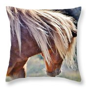 She Tossed Her Mane - Wild Pony Of Assateague Throw Pillow