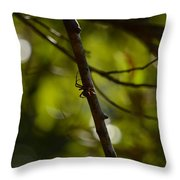 She Waits In Darkness Throw Pillow