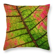 Shed Foliage Throw Pillow