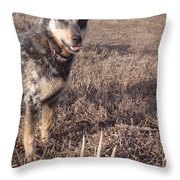 Shed Hunting Throw Pillow