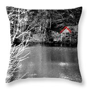 Shed On The Lake Throw Pillow