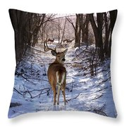 Shedding Time Throw Pillow