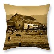Sheep And Barn Throw Pillow