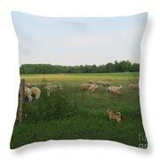 Sheep And Dog Throw Pillow