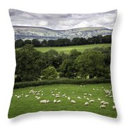 Sheep And More Sheep Throw Pillow