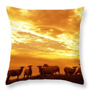 Sheep At Sunrise Throw Pillow
