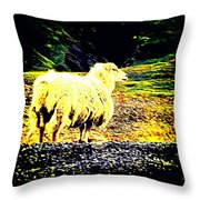 Don't You Look At Me With That Sheep Attitude  Throw Pillow