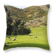 Sheep Country Throw Pillow