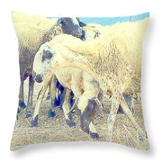 It's So Sheep To Be In The Middle Of A Crowd Throw Pillow