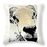 What A Sheep Face To Have   Throw Pillow