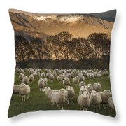 Sheep Flock At Dawn Arrowtown Otago New Throw Pillow