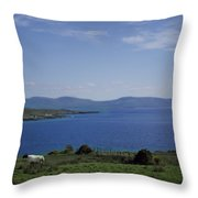Sheep Grazing By The Irish Sea - Donegal Ireland Throw Pillow