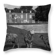 Sheep In French Landscape Throw Pillow