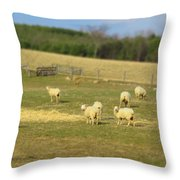 Sheep Out And About Throw Pillow