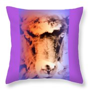 The Sheep Feel The Shame But It Isn't Her Fault  Throw Pillow