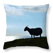 Sheep Silhouetted In Scotland Throw Pillow
