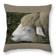 Sheep Sleep Throw Pillow