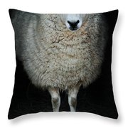 Sheep Throw Pillow by Stephanie Frey