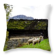 Sheeps And Rustic House Throw Pillow