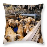 Sheeps Enclosure Throw Pillow