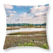 Sheldon Creek Bend Throw Pillow