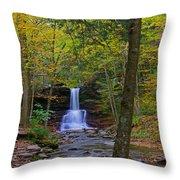 Sheldon Reynolds Falls And Kitchen Creek Throw Pillow