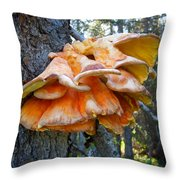 Shelf Fungus In Carl E. Wynn Nature Center In Homer-ak   Throw Pillow