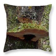 Shelf Mushroom With Moss Throw Pillow