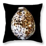 Shell 320 Throw Pillow