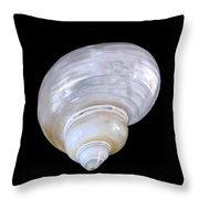 Shell 327 Throw Pillow
