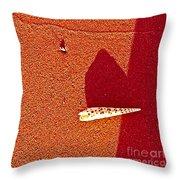 Shell And Sand Reddish Version Throw Pillow