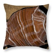 Shell Bands Throw Pillow