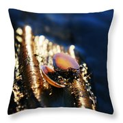 Shell By The River Throw Pillow