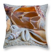 Shell Collectors Dream Throw Pillow