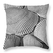Shell Effects 10 Throw Pillow