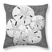 Shell Effects 4 Throw Pillow