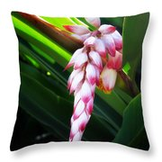 Shell Ginger 1 Throw Pillow