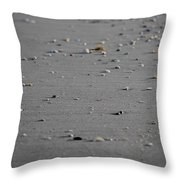 Shell Line Throw Pillow