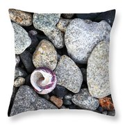 Shell On The Shore 1 Throw Pillow