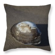 Shell Or Someone's Dinner Throw Pillow