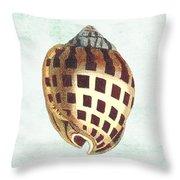 Shell Treasure-b Throw Pillow