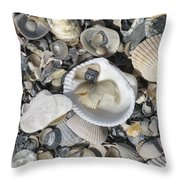 Shells In Shells 1 Throw Pillow