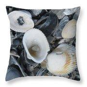 Shells In Shells 2 Throw Pillow