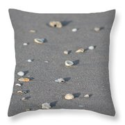 Shells On A Beach Throw Pillow