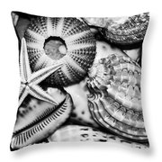 Shellscape In Monochrome Throw Pillow